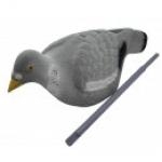 Pigeon complete kit